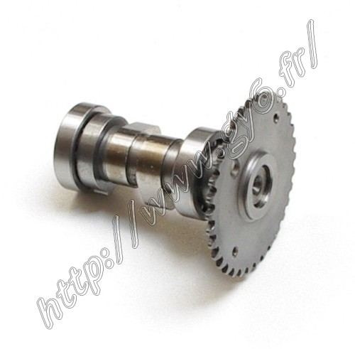 camshaft for motor  QJ153QMI