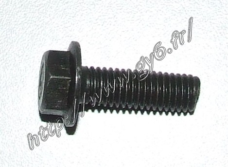 fixation bolts for brake caliper M8x25mm