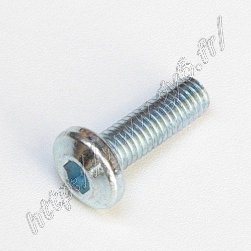 fixation screw for 125CC 150CC front braking disk