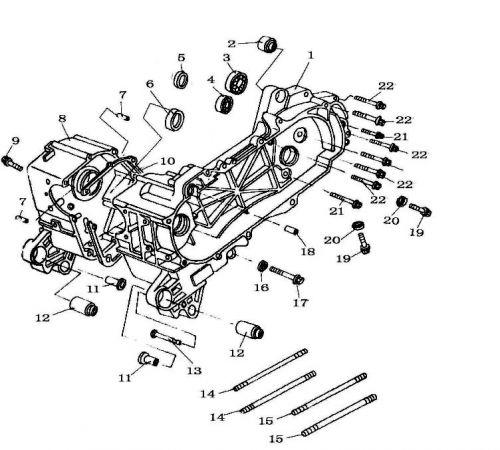 50cc parts - motor - lower engine